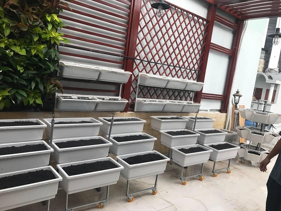Bán giàn trồng rau thông minh tại nhà uy tín và giá rẻ-cty Quang Anh