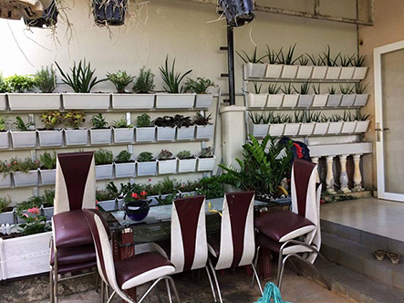 Bán kệ trồng rau sạch thông minh tại tphcm-Công ty Quang Anh